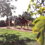 Tekne fitness retreats also include horse riding