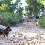 Teddy loves our hikes at Tekne Fitness Retreats Ibiza